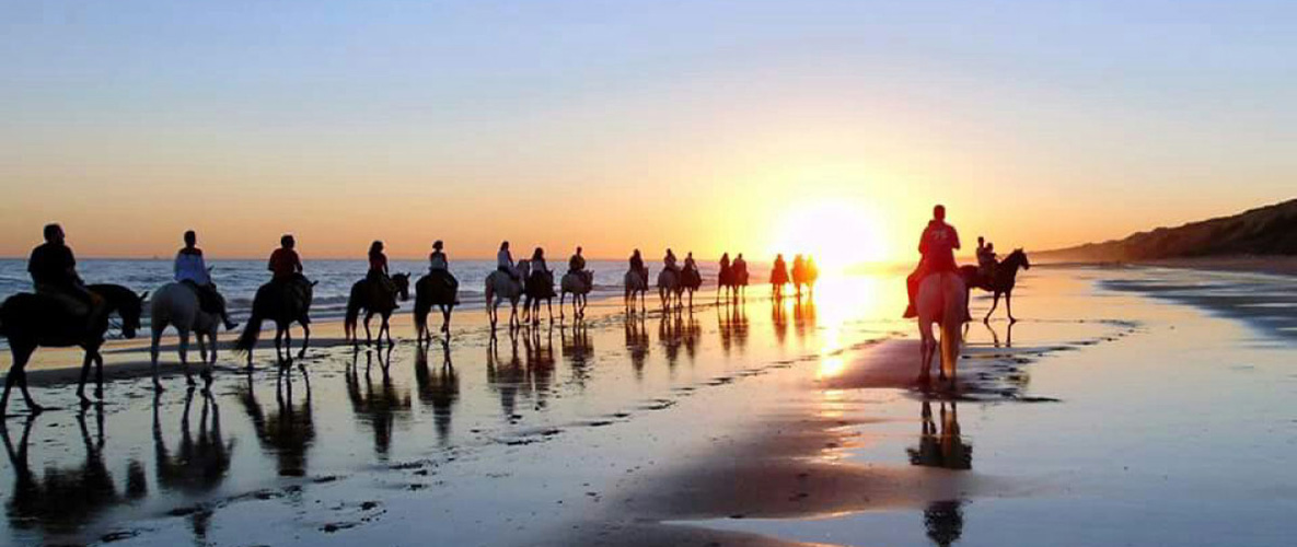 Horseback riding to the national preserve of Doñana, one of the rural activities of Lince Casa Rural