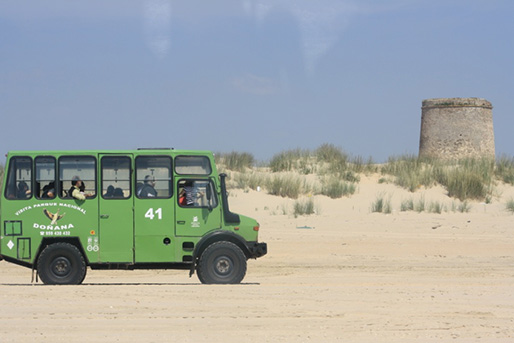 An off-road car visiting the Doñana National Natural Park, which is next to Lince Casa Rural