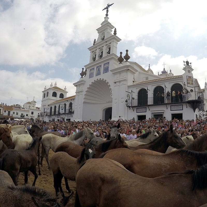 Take out mares in front of the El Rocío temple, one of their rural traditions
